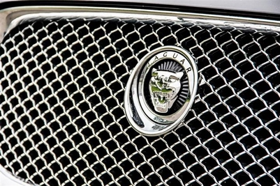 CHROME RVS HONINGGRAAD GRILLE MET CHROME OMLIJSTING